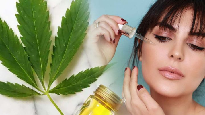 Some tips for choosing the right CBD oil